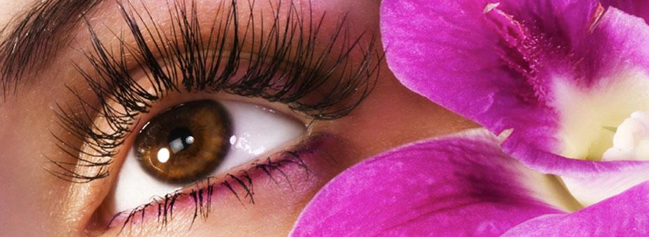 Eye Treatments at Beautique